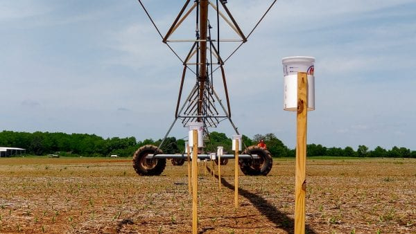 Figure 2. Uniformity of water application on a center pivot irrigation system assessed using a catch-can test.