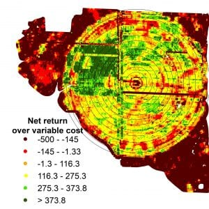 Figure 8. Spatial analysis of net returns across irrigated and dryland areas shows the economic impact of irrigation and pivot maintenance.
