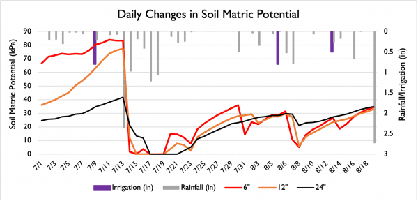 Figure 10. Daily changes in soil matric potential as a result of rainfall or irrigation.
