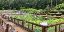 Bruno Vegetable Garden at Birmingham Botanical Gardens