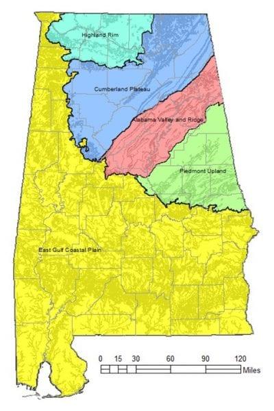 Geological Survey of Alabama