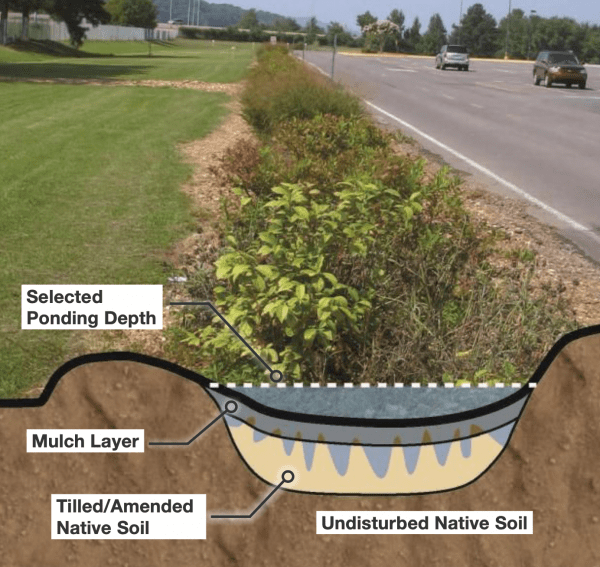 Figure 7. Rain gardens can be designed in various shapes and sizes. This image illustrates how rain gardens capture and infiltrate water running off impervious surfaces.