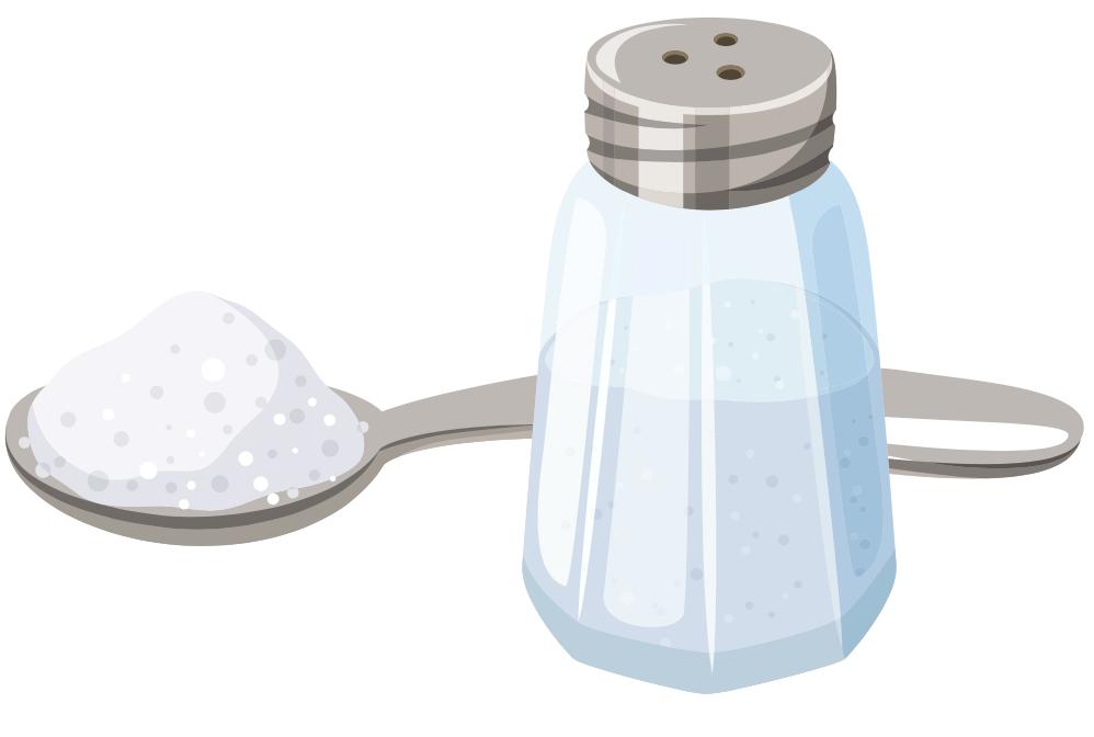 illustrated salt shaker