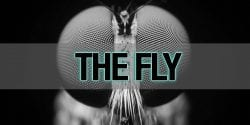 The Fly – Alabama Cooperative Extension System