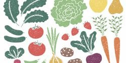 Illustrated fruits and vegetables