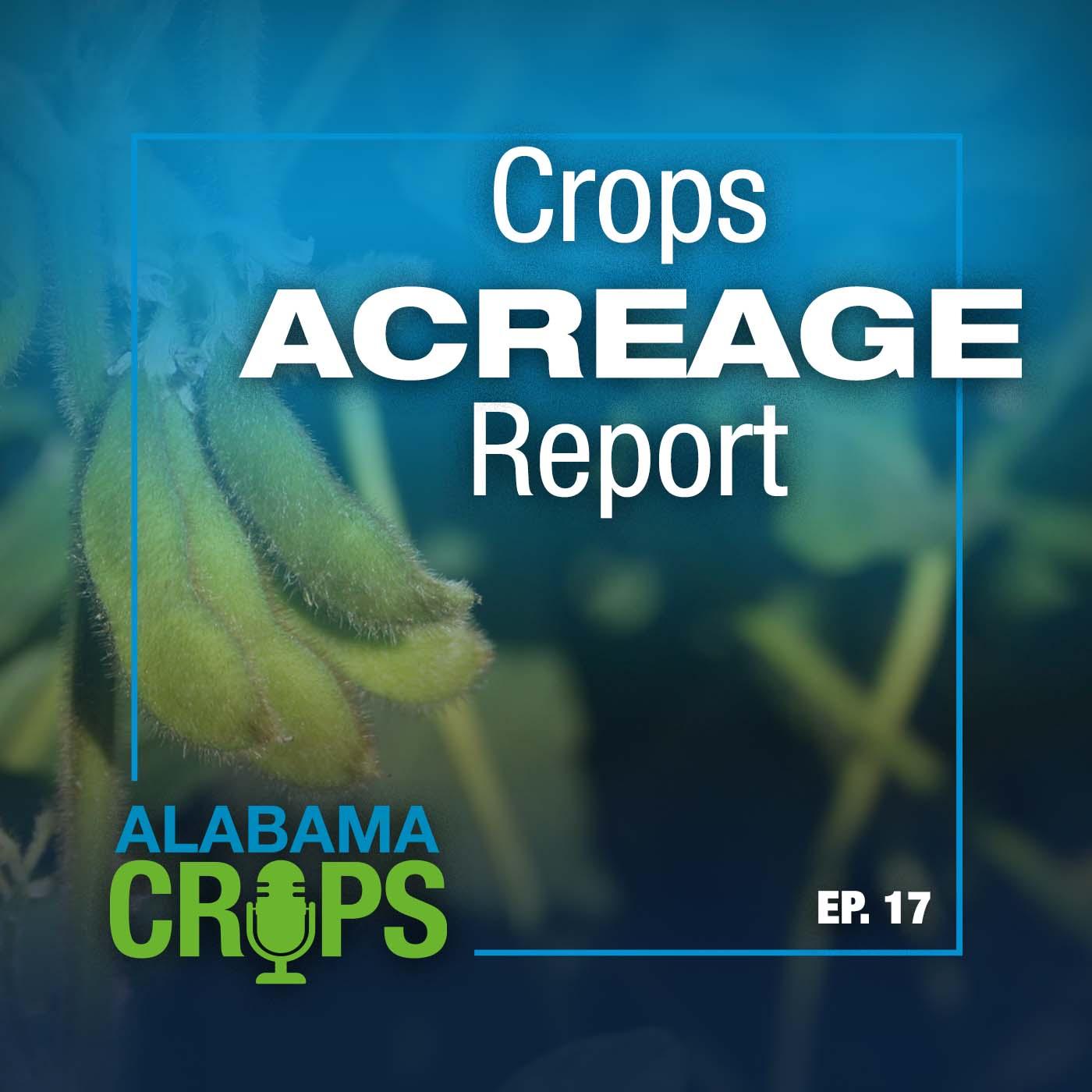 Alabama Crops Report Episode 17 - Crops Acreage Report