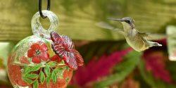 female ruby-throated hummingbirds at a feeder