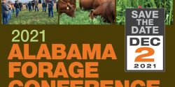 2021 Alabama Forage Conference. Save the Date. Dec 2, 2021