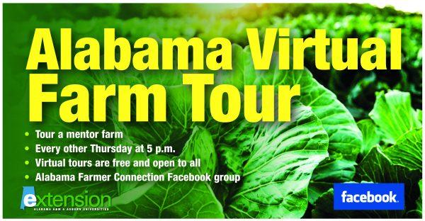 Alabama Virtual Farm Tour