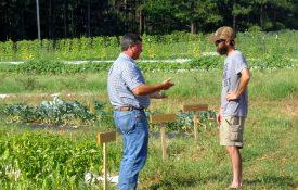 On-farm visit