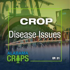 crop disease issues