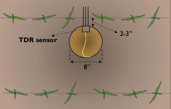 Figure 9. Step 1 of time domain reflectometry soil sensor installation.