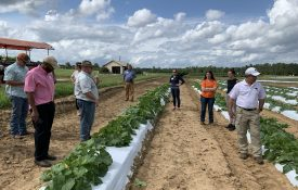 Commercial Horticulture Team member Chip East talking with growers