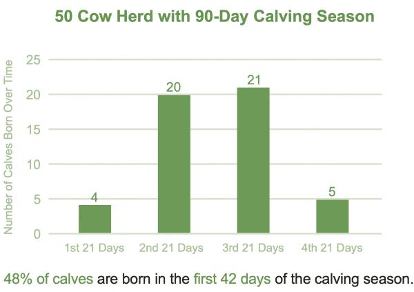 Figure 2. Less efficient calving distribution.