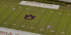 Pat Dye Field - Auburn University