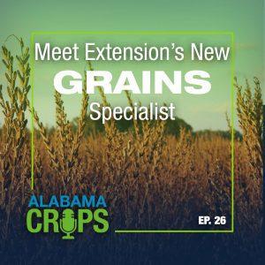 Episode 26 – Meet Extension's New Grains Specialist