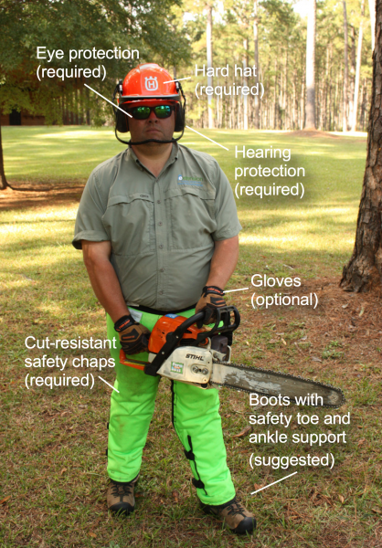 Figure 1. Personal protective equipment (PPE) that should be used when operating a chainsaw.