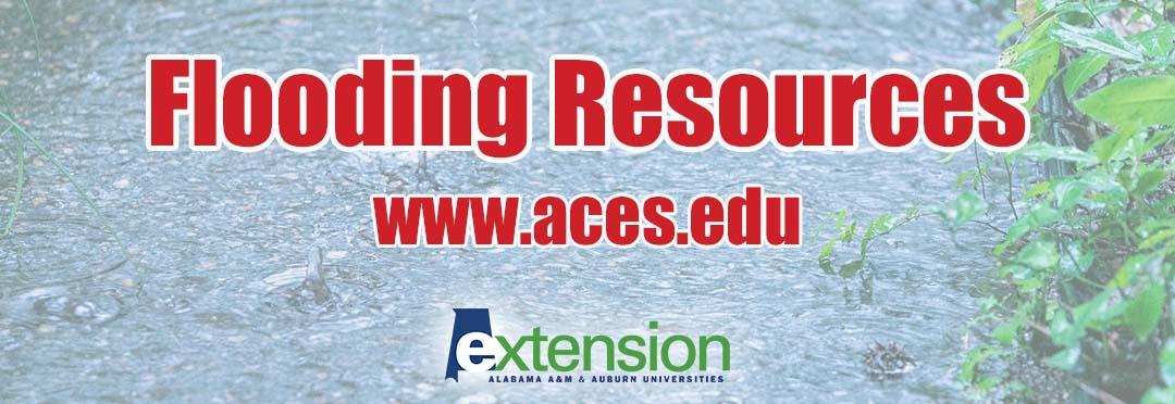 Flooding Resources www.aces.edu