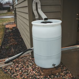 Figure 5. Catchment roof with gutters leads water into a conveyance PVC pipe, transporting water into a cistern.