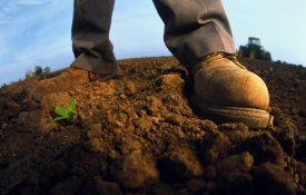 Farmers boots in the soil