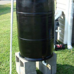 Figure 7. Rain barrel made out of recycled syrup barrel, placed upside down with a PVC connector